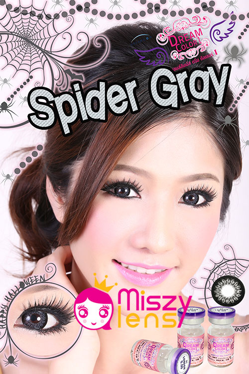 spider-gray Dreamcolor1
