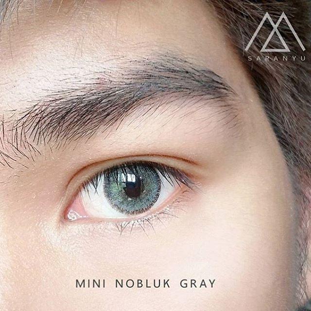 Mini-nobluk-gray5